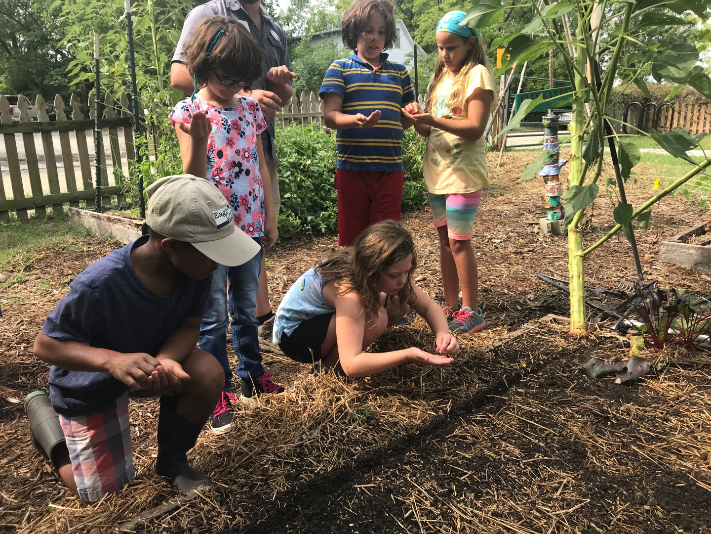 City Garden School
